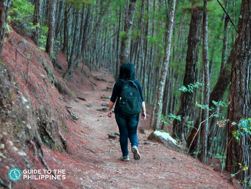 Female traveler taking a stroll at Camp John Hay in Baguio City, Philippines