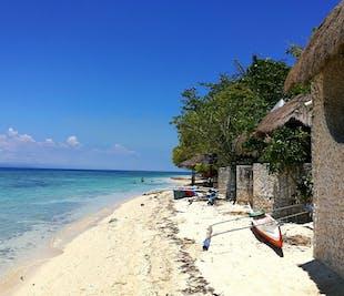 Moalboal Cebu Island-Hopping & Kawasan Falls Private Tour | With Lunch