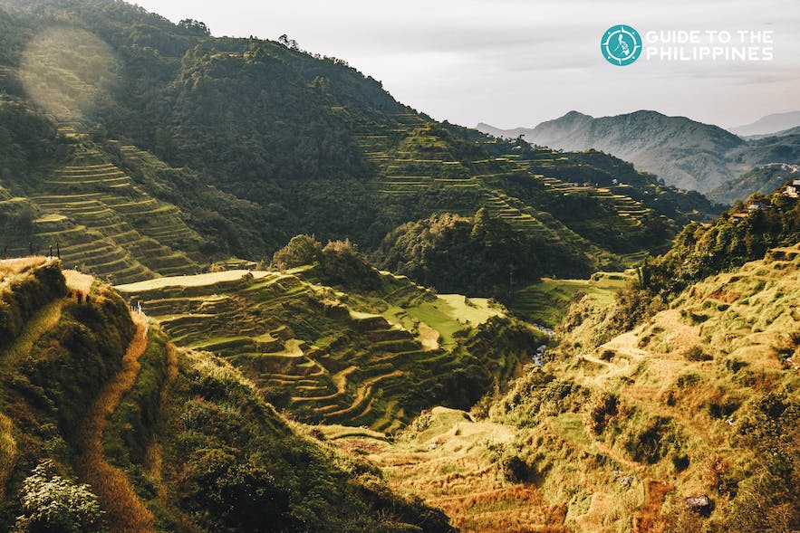 Kapay-aw Rice Terraces in Sagada, Mountain Province