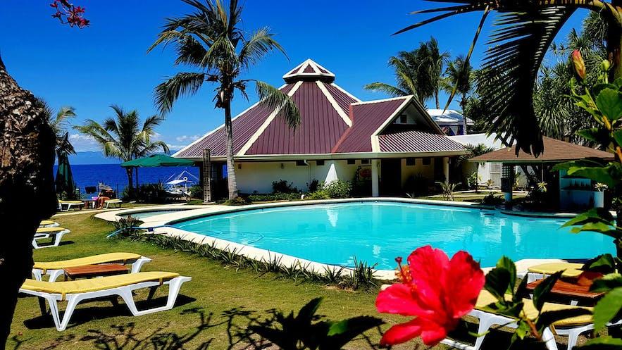 Pool view of Quo Vadis Dive Resort in Moalboal, Cebu