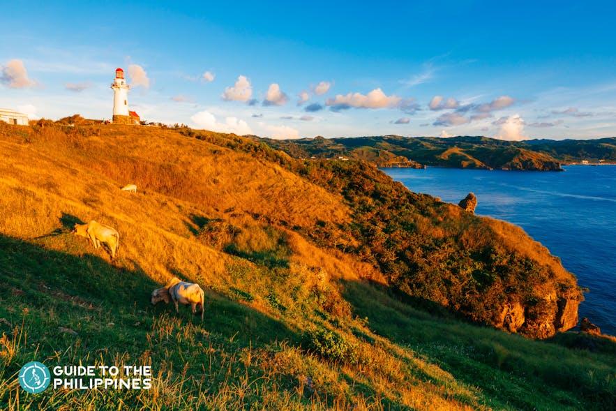 Golden hour at Naidi Hills in Batan, Batanes