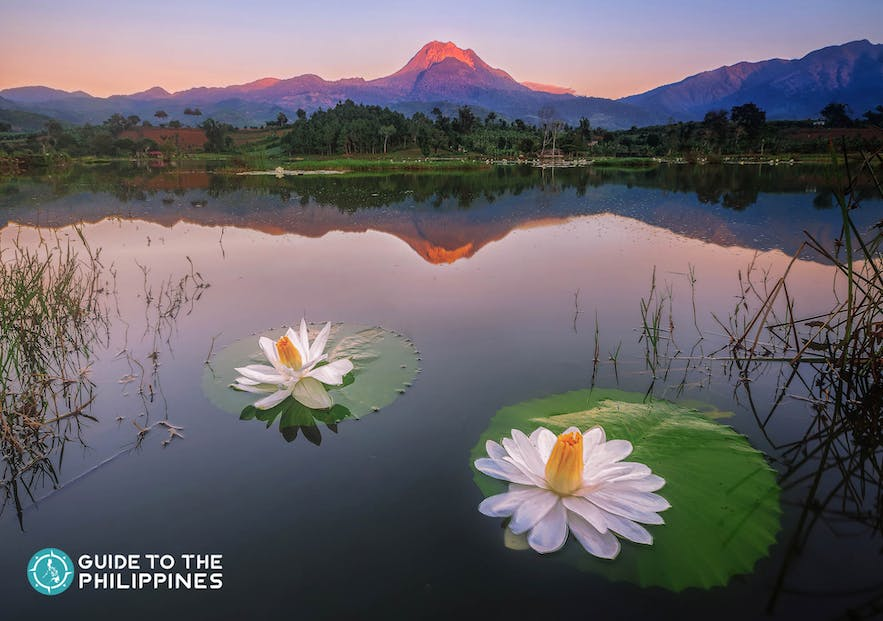 Mount Apo in Davao City is touted as the King of Philippine Peaks