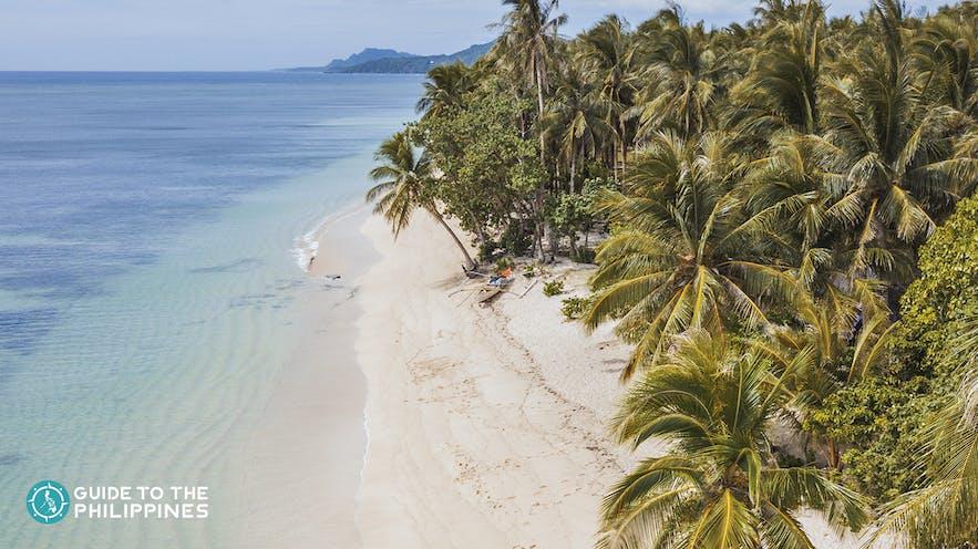 Aerial view of Alegria Beach in Siargao Island