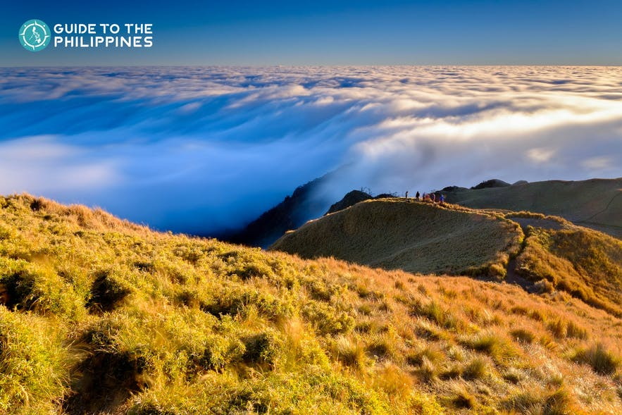 Sea of clouds at Mt. Pulag