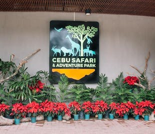 Cebu Safari and Adventure Park with Liloan Lighthouse Day Tour