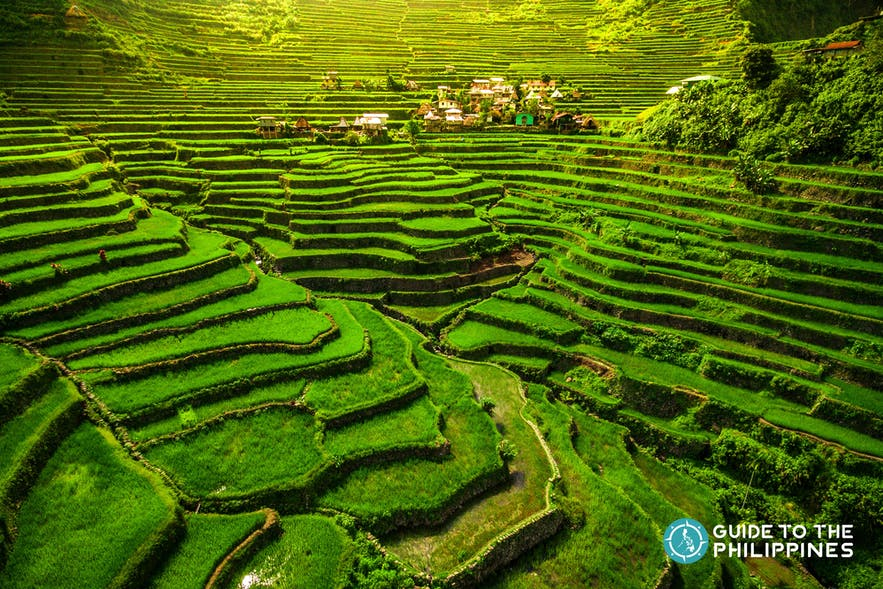 UNESCO World Heritage Batad Rice Terraces in Northern Luzon, Philippines