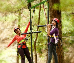 Baguio Tree Top Adventure Canopy & Silver Surfer Ride