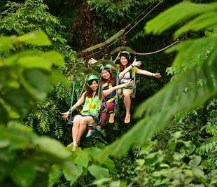 Baguio Tree Top Adventure Canopy & Superman Ride