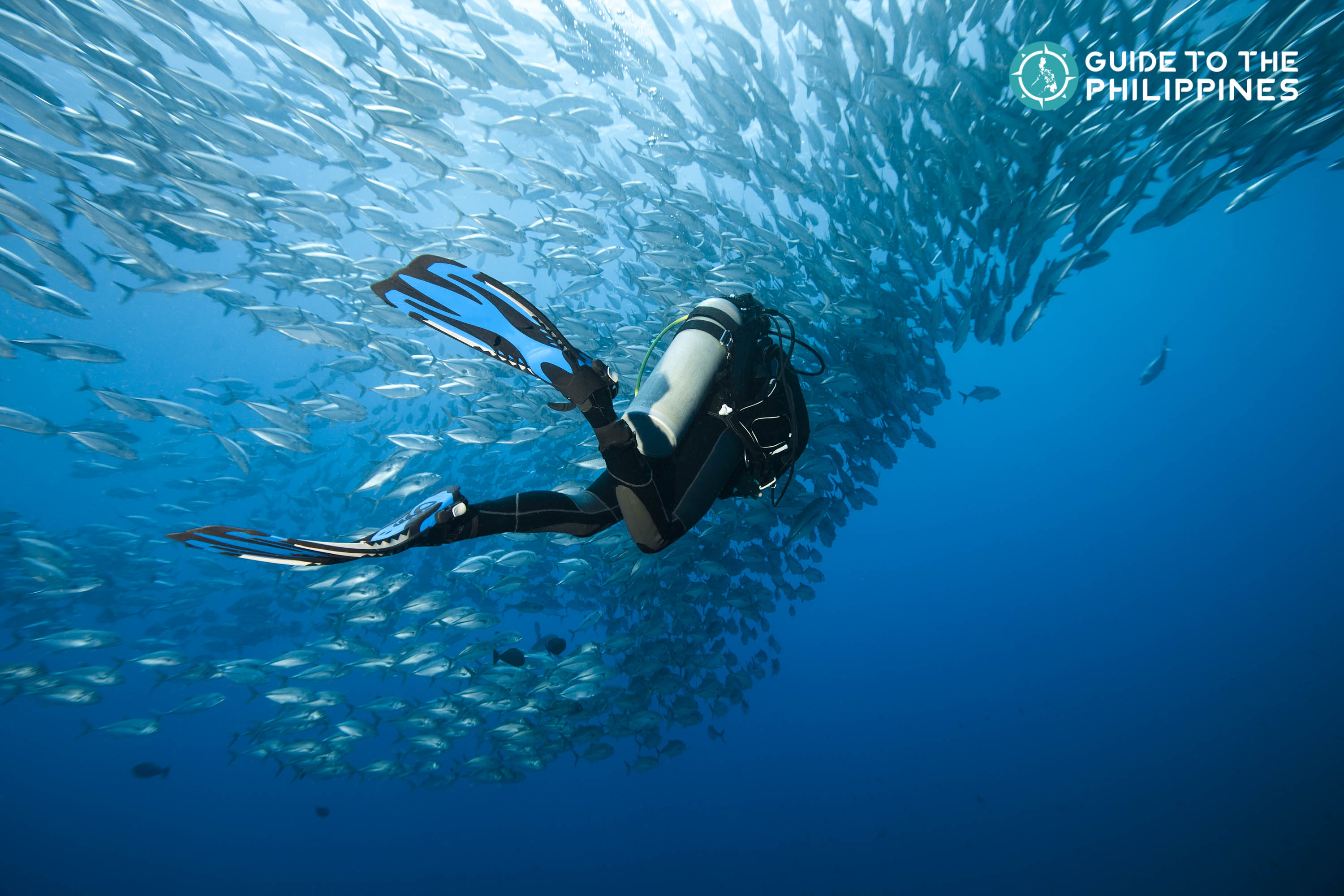 7 Most Incredible Diving Spots in the Philippines