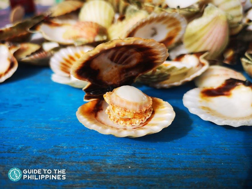 Steamed scallops available at Bantayan Island