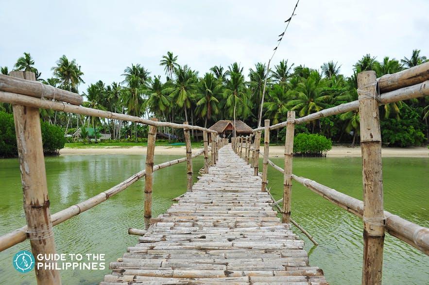 Walkway to Obo-ob Mangrove Garden of Bantayan Island
