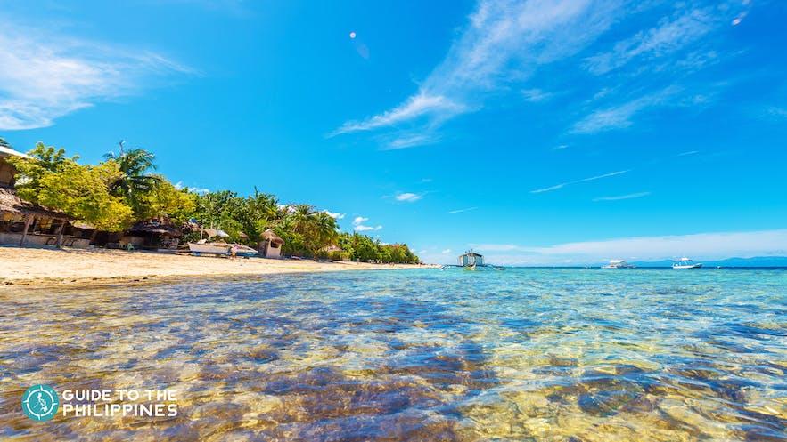 Clear waters of Moalboal Cebu