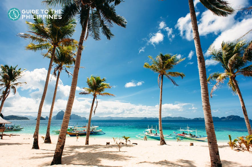 Paradise and coconut trees in the tropical beach of El Nido