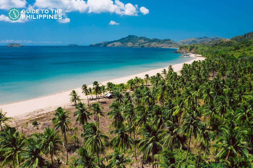 Aerial view of Duli Beach shores and coconut trees