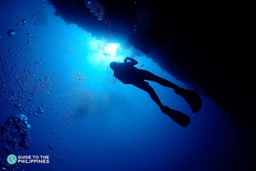 Diver in Malapascua, Cebu