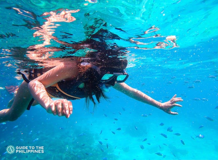 A female traveler snorkeling