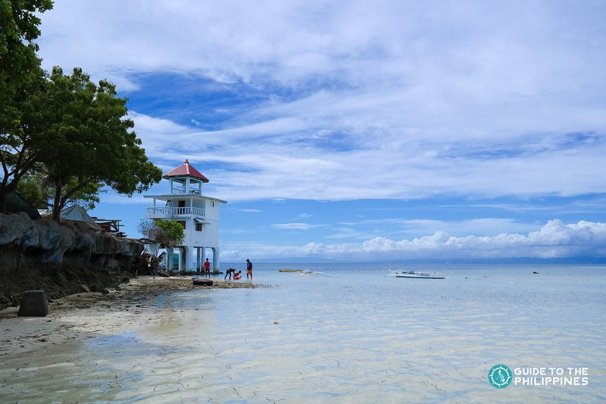 Nalusuan marine sancturay in Cebu