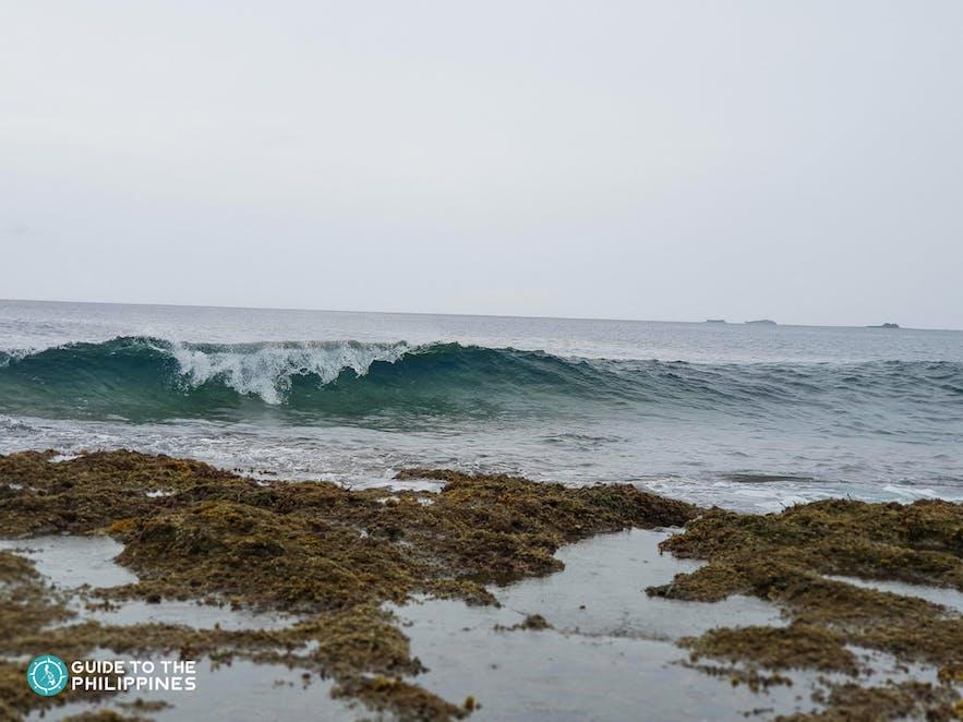 Pilar Surfing Spot in Siargao