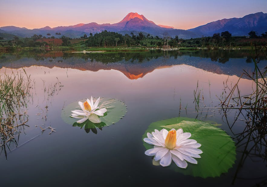 Mount Apo in Davao