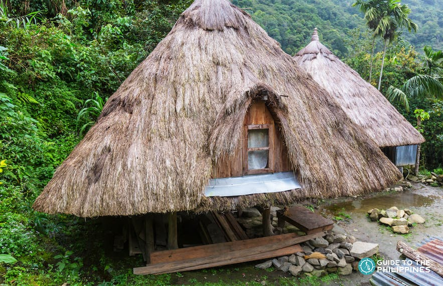 Traditional native house with cogon roofing in Tam-An Village, Banaue