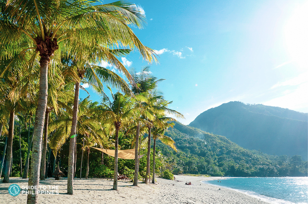 Guide to Puerto Galera: Travel Requirements, Resorts, Diving Spots