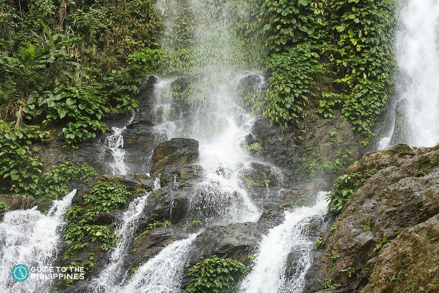 puerto galera tamaraw falls