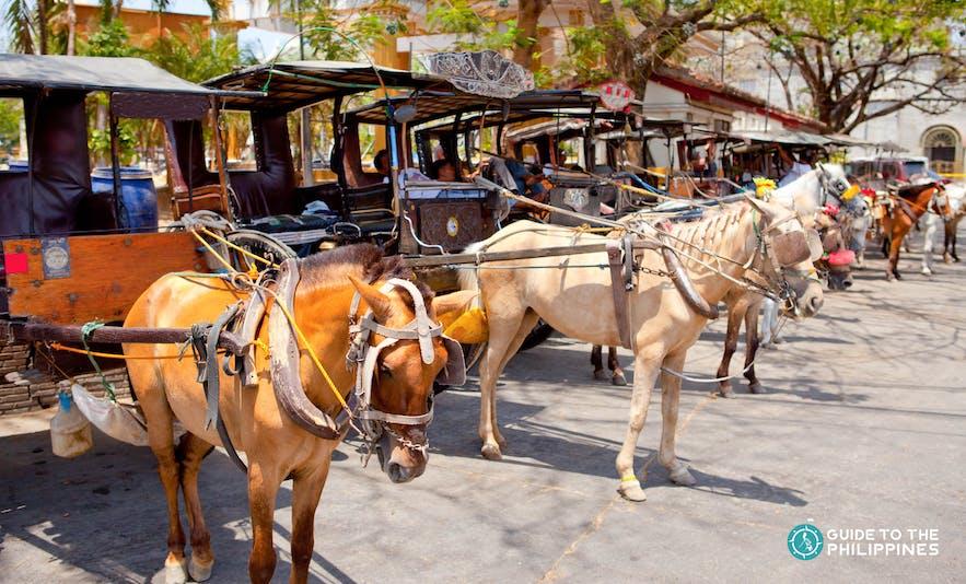 Several kalesa parked in Vigan City, Ilocos Sur