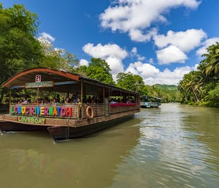 Loboc River Cruise Tour in Bohol   With Buffet and Transfer