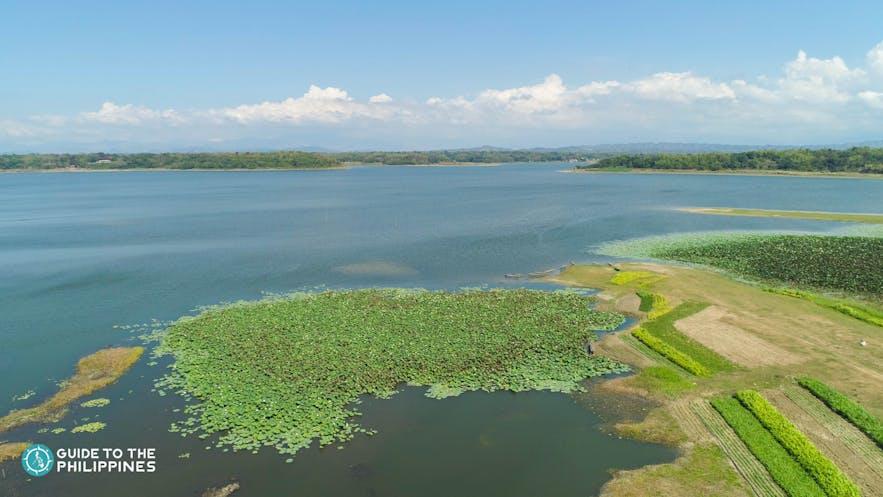 Paoay Lake in Ilocos Norte
