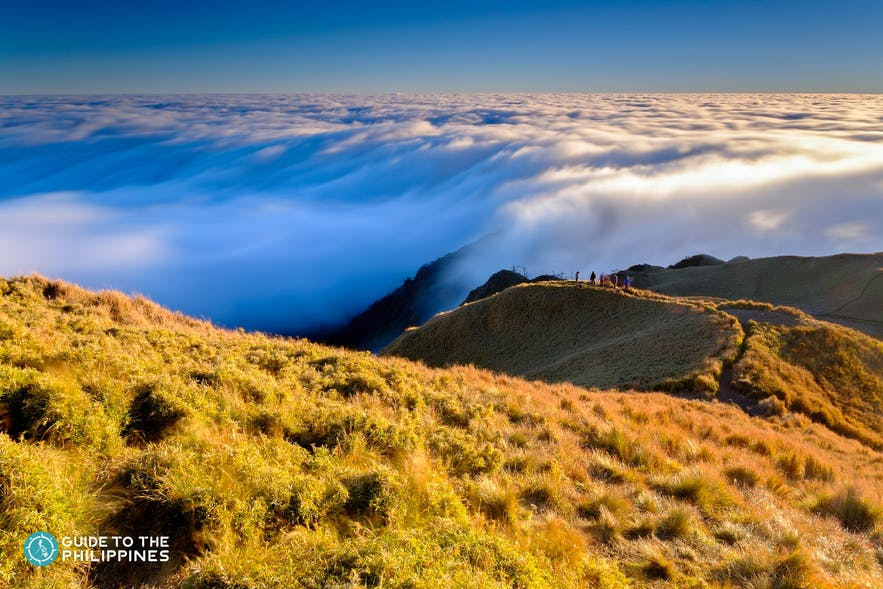 Aerial view of Mt. Pulag's Sea of Clouds