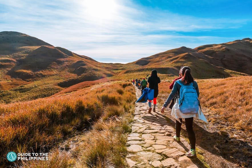Beginners' hiking trail in Mt. Pulag, Benguet