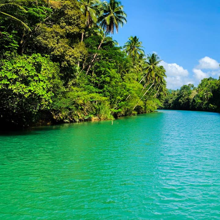 Loboc Ecotourism Adventure Park Bohol Day Tour | With Stand-Up Paddleboarding