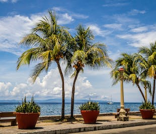 Dumaguete's Top Tourist Spot I Half-Day Sightseeing with Transfer