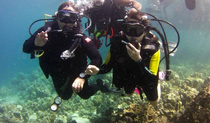 Talicud Island Davao Full-Day Private Tour | With Hotel Transfers