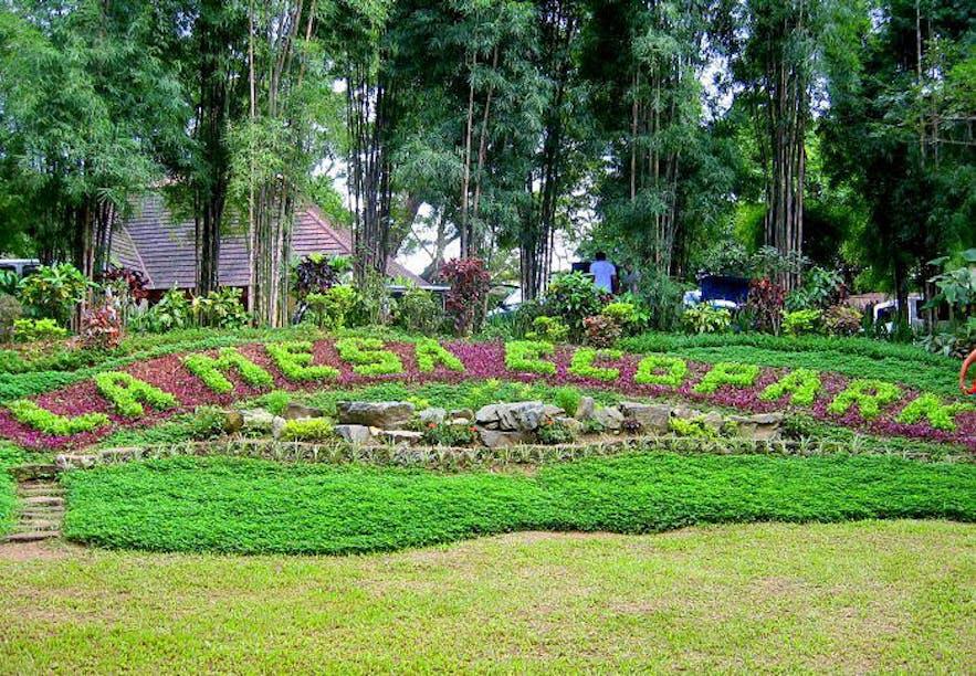 La Mesa Eco Park in Quezon City