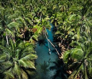 Siargao Sugba lagoon, Kawhagan Island, Maasin Coconut Forest Tour   With Lunch & Transfer