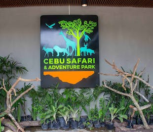 Cebu Safari & Adventure Park Private Day Tour | With Lunch and Transfers