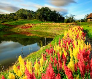 Mactan Cebu Panoramic & Highlands Day Tour with Transfer
