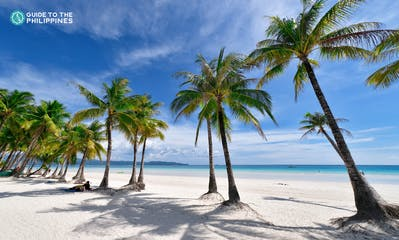 palm-trees-white-sand-beach-boracay-philippines.jpg
