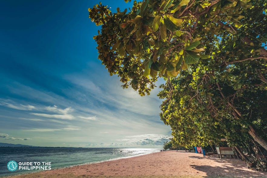 Pink Beach on Sta. Cruz Island in Zamboanga