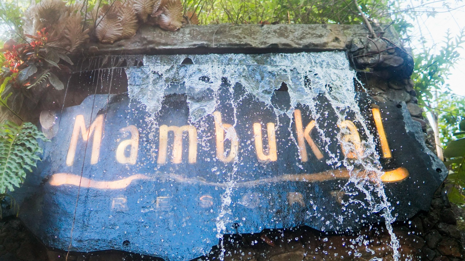 Mambukal Resort Private Day Tour with Transfers from Bacolod