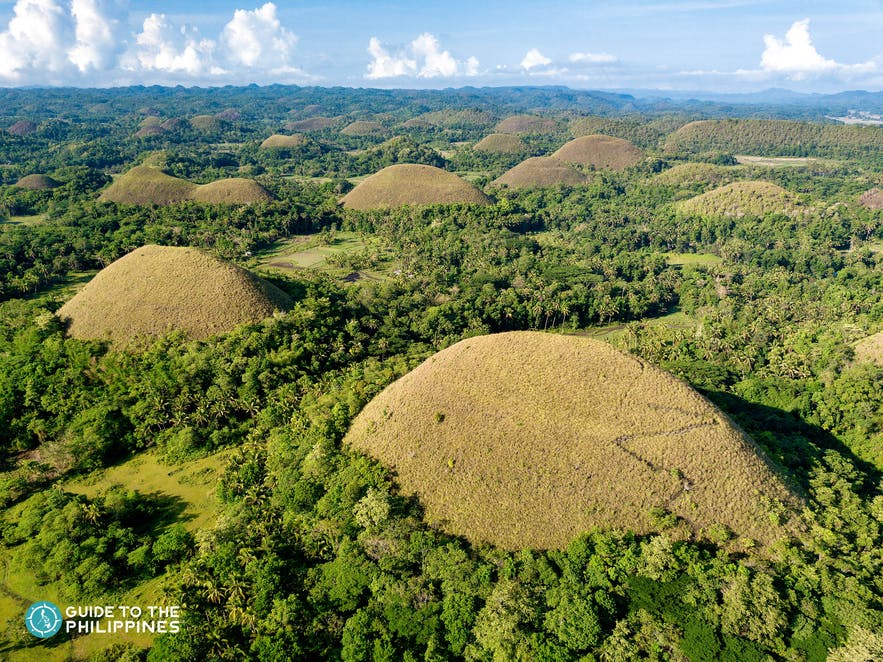 The famous Chocolate Hills in Bohol, Philippines