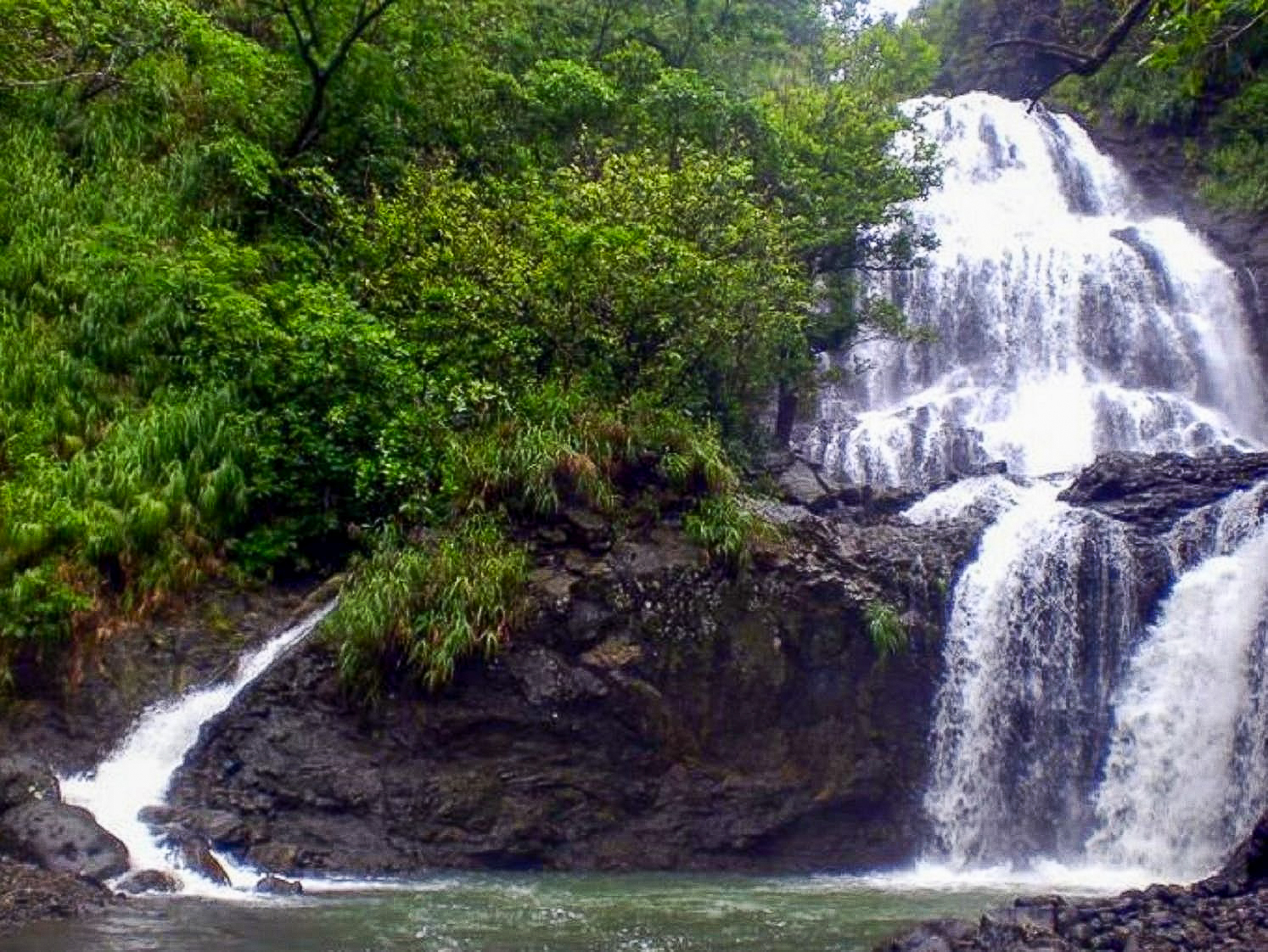 Real Quezon Waterfalls Day Tour with Transfers from Manila
