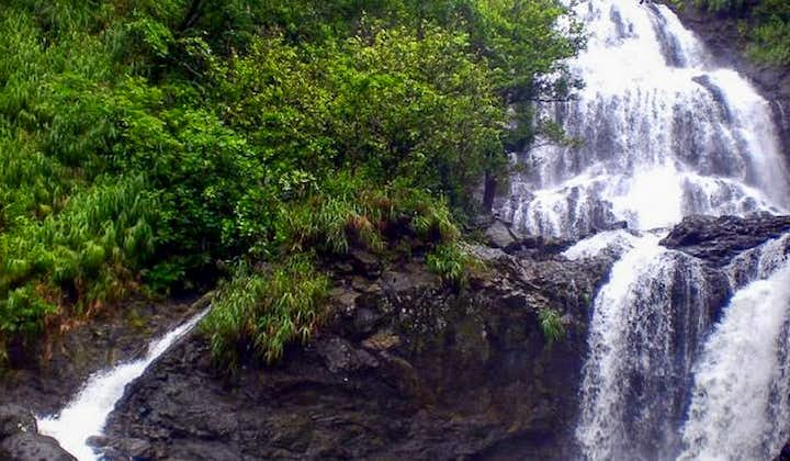 Real Quezon Waterfalls Day Tour with Transfers