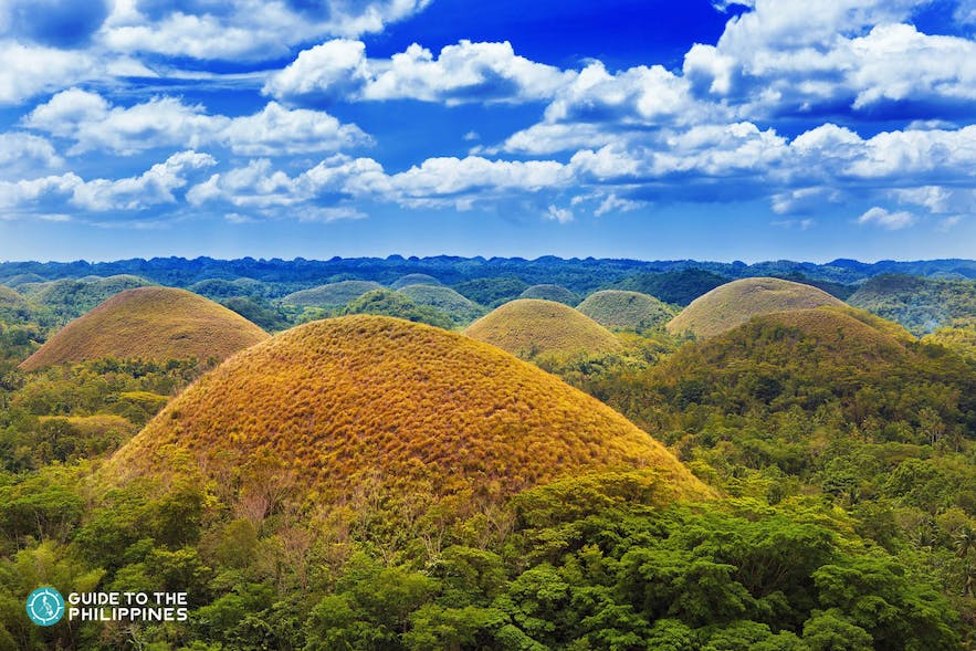 View of the Chocolate Hills in Bohol during dry season