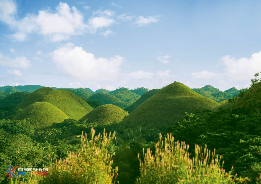 View of the Chocolate Hills in Bohol during rainy season
