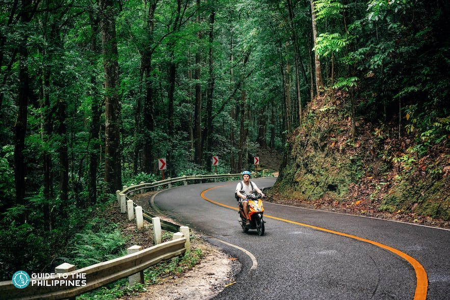 Traveler wandering through the Bilar Man-Made Forest on a motorcycle