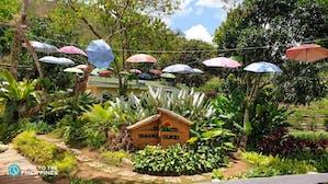Yamang Bukid Farm