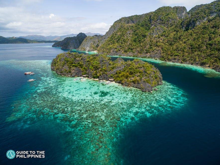 Coral Garden in Coron Palawan