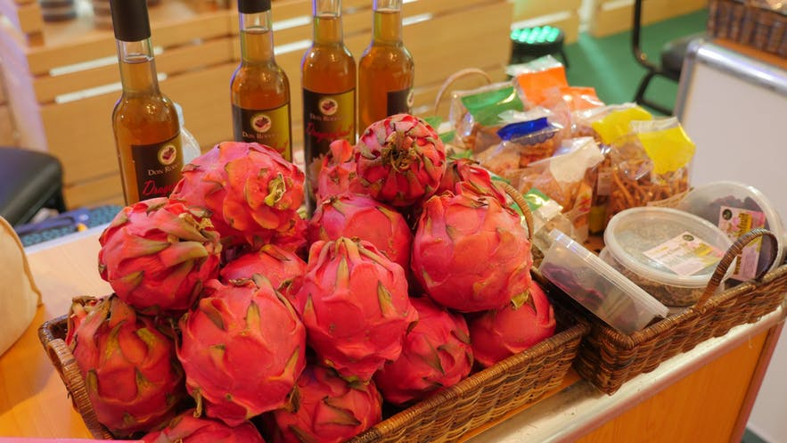 Dragonfruit products in Ilocos Norte